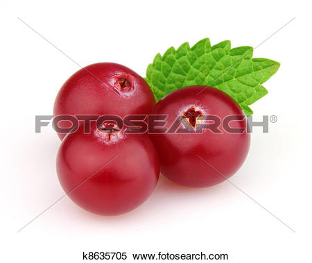 Stock Image of Cranberry with melisa k8635705.