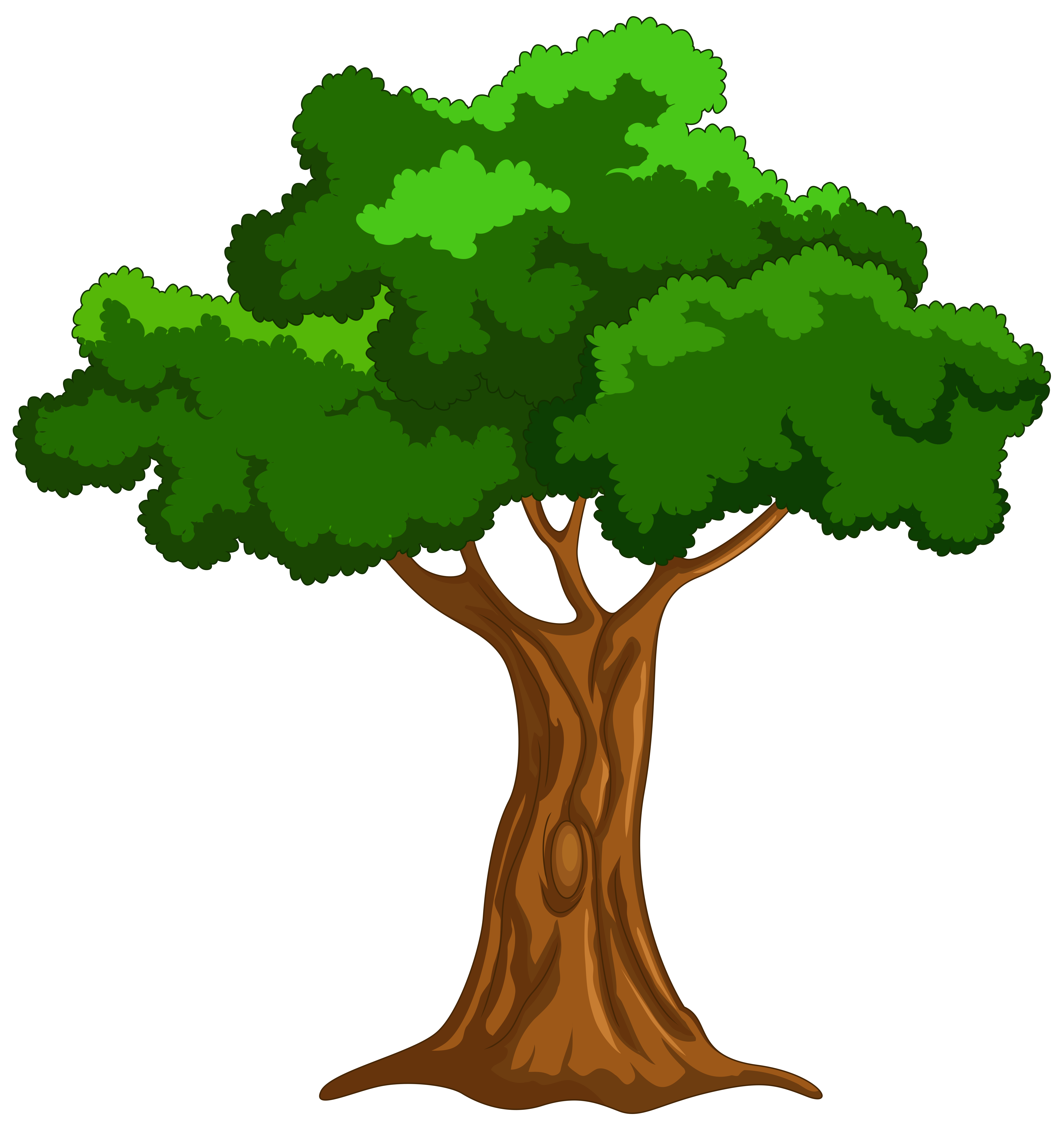 Cartoon Tree PNG Clip Art.