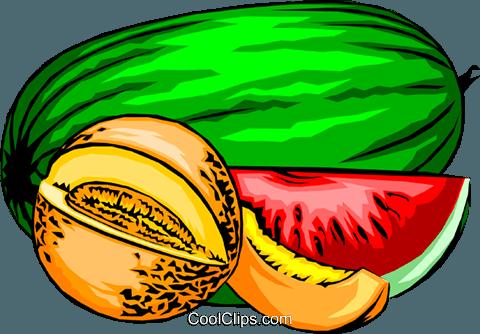Melons Royalty Free Vector Clip Art illustration.