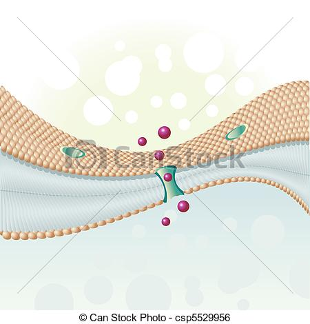Membrane Illustrations and Clip Art. 2,654 Membrane royalty free.