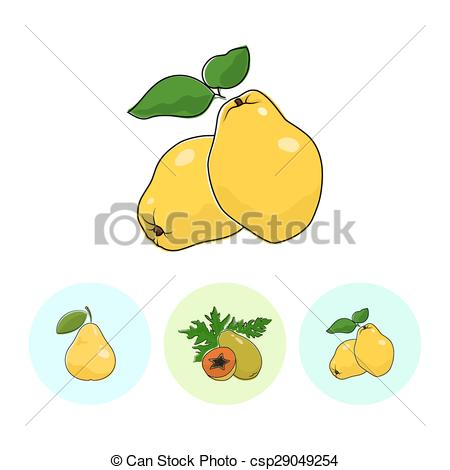 Clipart vectorial de iconos, fruta, pera, papaya, membrillo.