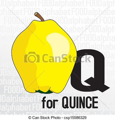 Ilustraciones de Vectores de alimento, alfabeto, Q, membrillo.