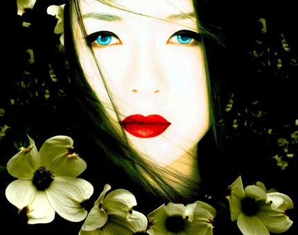 1000+ images about My Geisha on Pinterest.