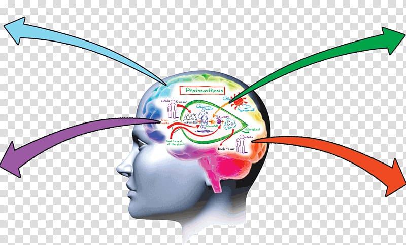Memory improvement Brain Memorization Learning, Guru.