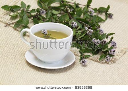 Mentha Piperita Stock Images, Royalty.