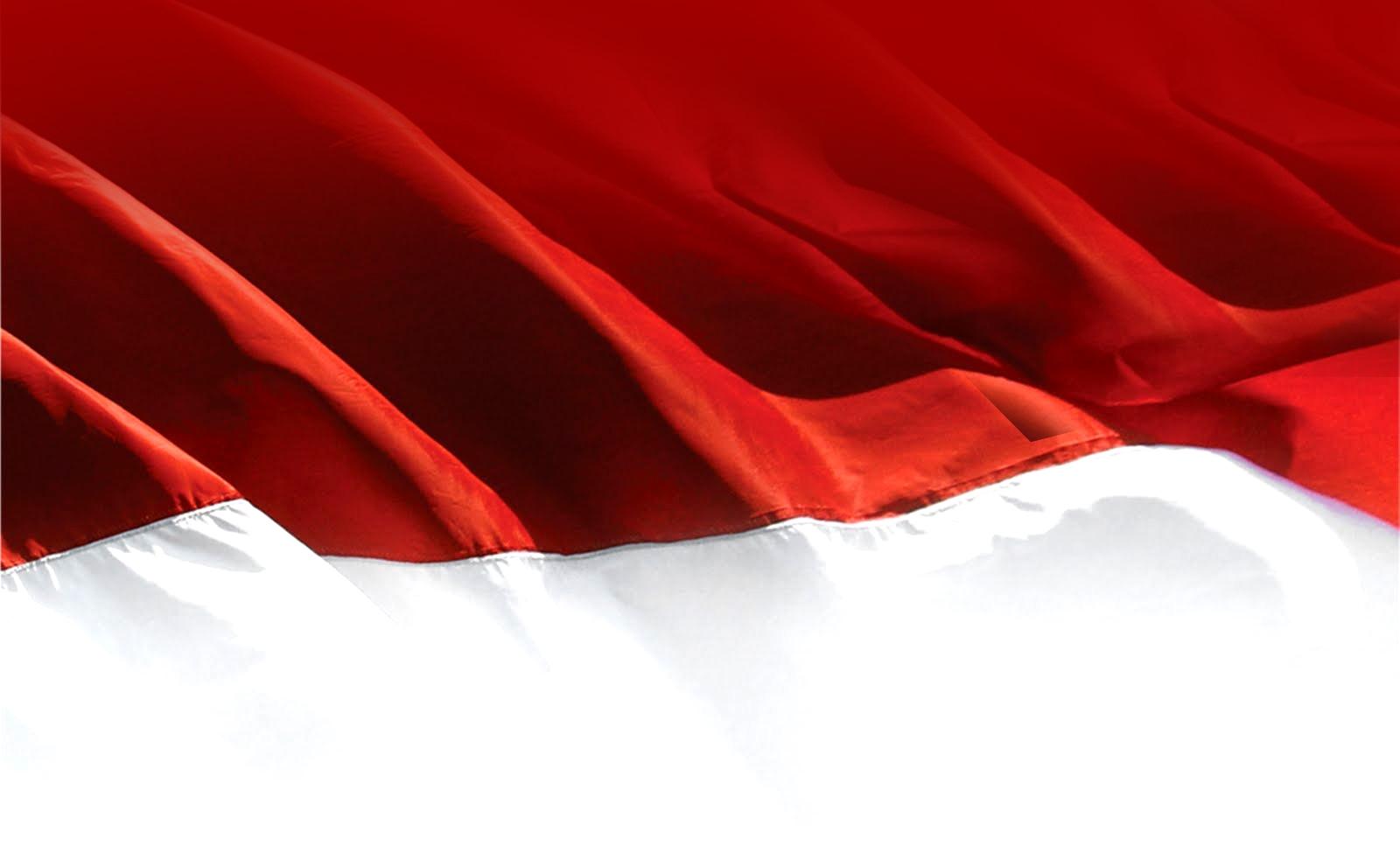 Free Download Wallpaper Bendera Merah Putih.