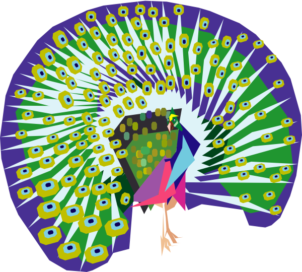 Cartoon Peacock Clip Art at Clker.com.
