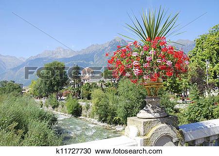 Stock Photography of Flowers in Meran k11727730.