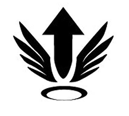Amazon.com: OVERWATCH VIDEO GAME MERCY ULTIMATE ICON VINYL.