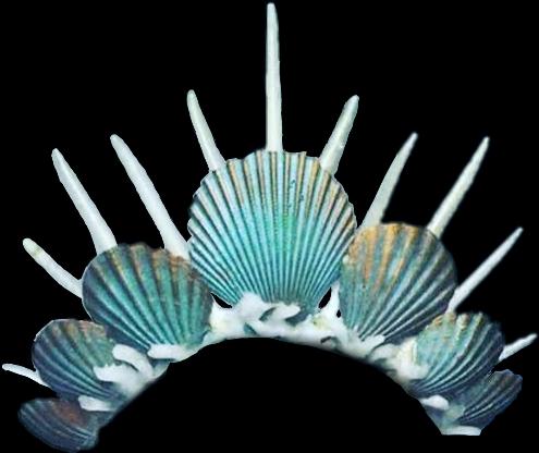 shells mermaid crown.