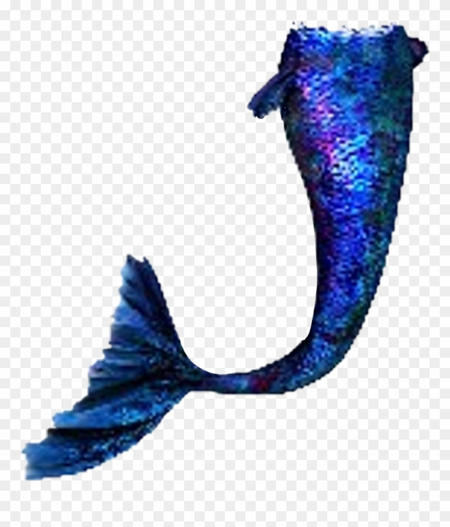 blue #mermaid #mermaidtail.