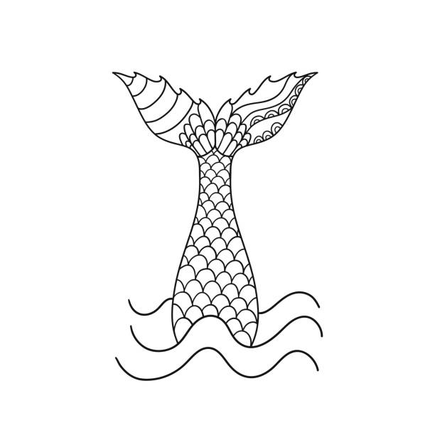 Best Mermaid Tail Illustrations, Royalty.