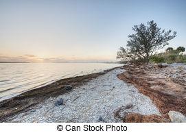 Picture of Merritt Island Wildlife Refuge in the Morning.