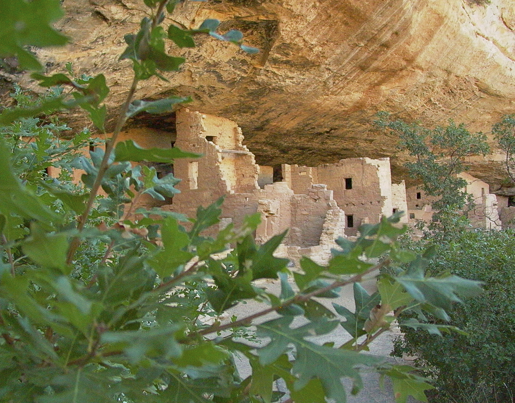 Free Mesa Verde National Park Pictures.