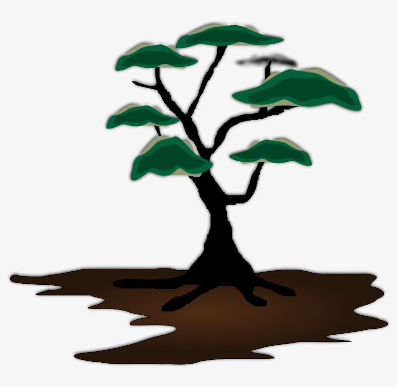 Mesquite Tree Clip Art Transparent PNG.