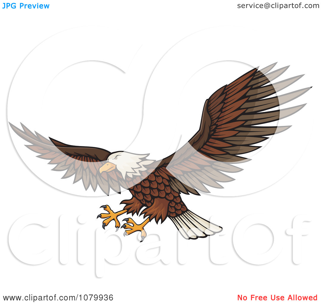 Clipart Flying Bald Eagle With Extended Talons.