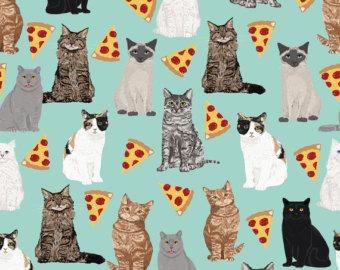 Pizza cat.