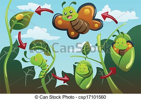 Metamorphosis Illustrations and Clipart. 593 Metamorphosis royalty.