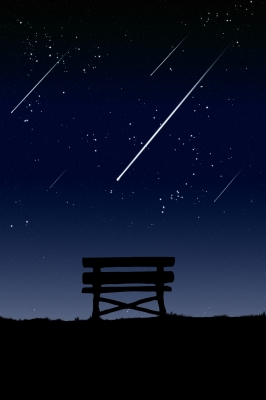 The Holiday Whiz: South Taurids Meteor Shower 2013.