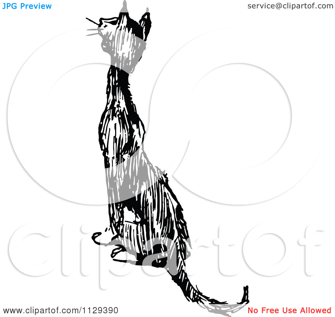 Clipart Of A Retro Vintage Black And White Cat Meowing And Sitting.