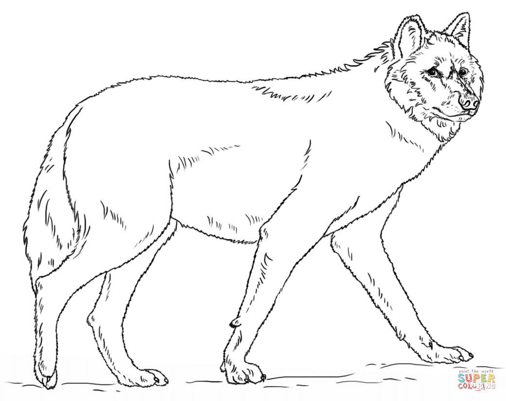Wolf coloring pages.