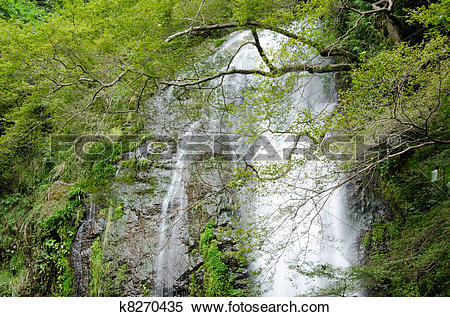 Stock Image of Water fall at the Mino Quasi National Park in Japan.