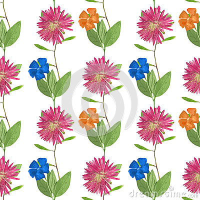 Aster, Michaelmas Daisy, Periwinkle. Seamless Pattern Texture Of.