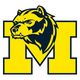 1000+ ideas about Michigan Wolverines Football on Pinterest.
