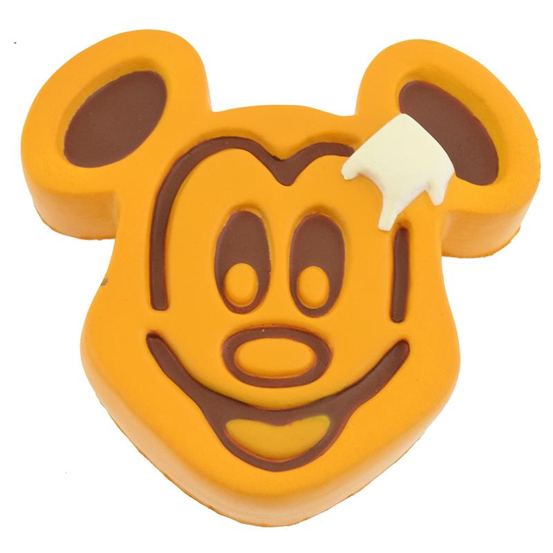 Disney Magnet.