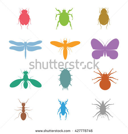 Insect Icon Flat Set Mosquito Grasshopper Stock Vector 265878329.