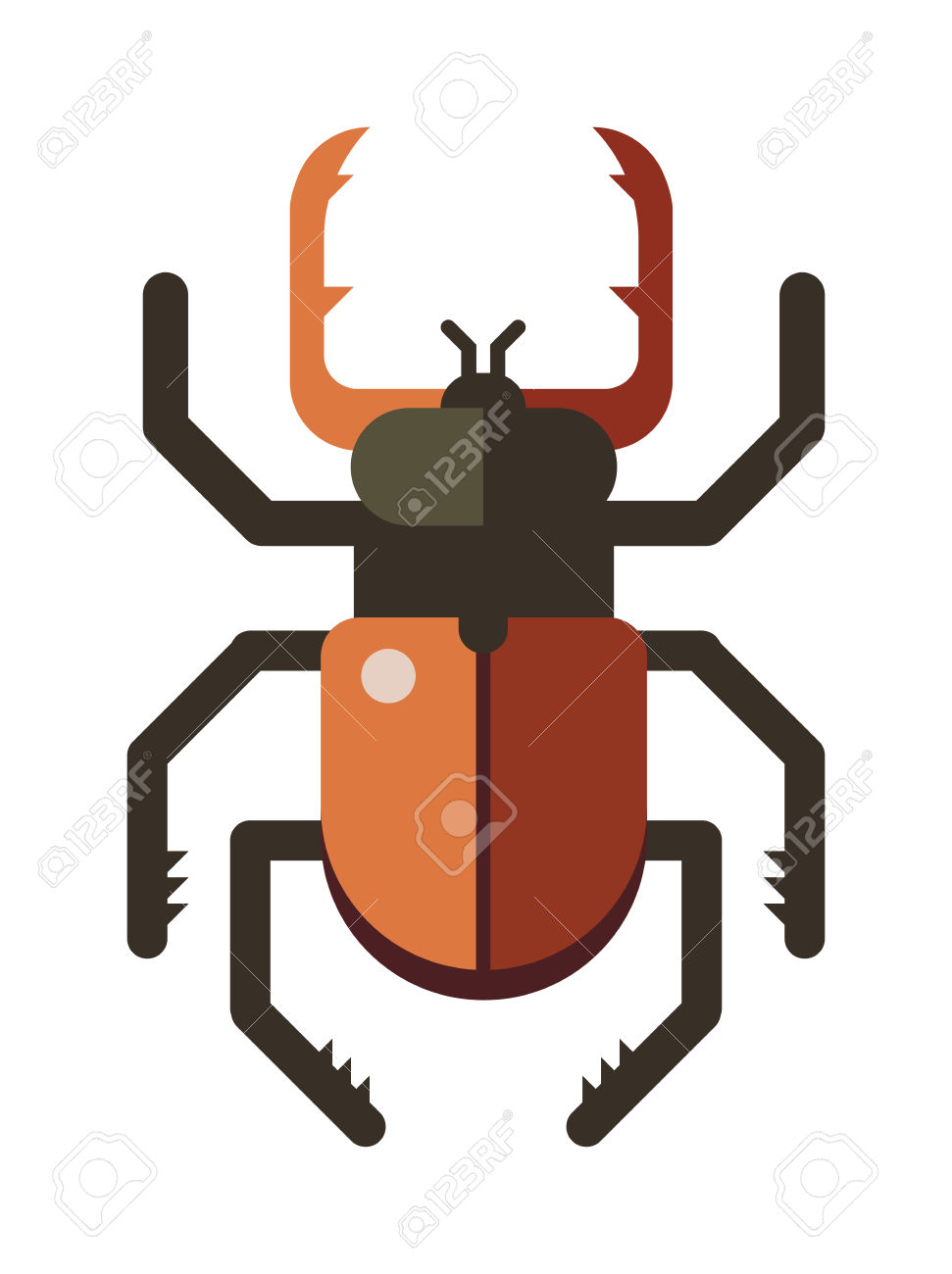 Colorful Insects Vector Stag Beetle. Insects Biology Natural.