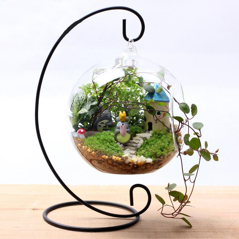 Online Get Cheap Micro Mini Plants.