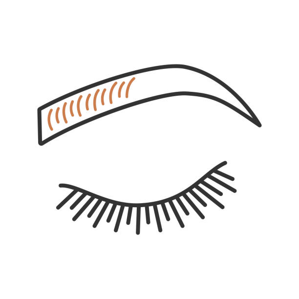 Best Microblading Illustrations, Royalty.