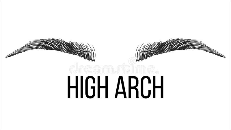 Microblading Stock Illustrations.