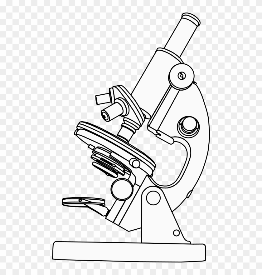 Microscope Clipart Black And White, HD Png Download.