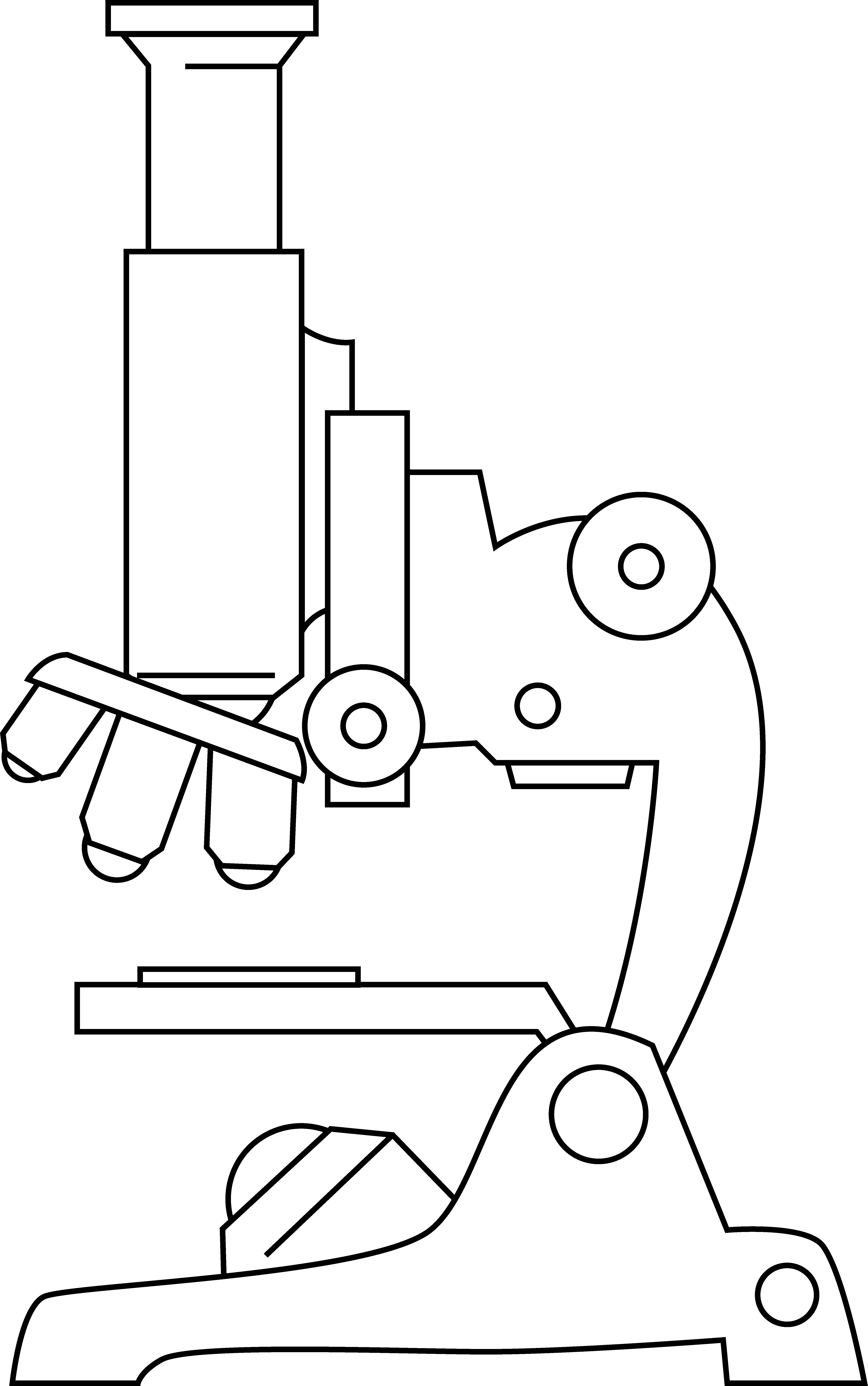 Pictures Of Microscopes.