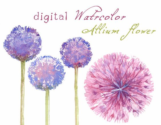 Watercolors, Awesome and Google on Pinterest.