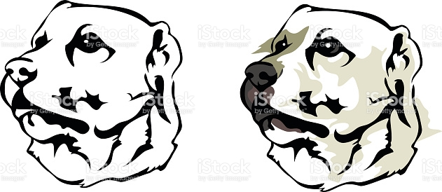 Alabai Central Asian Shepherd Dog stock vector art 530088979.