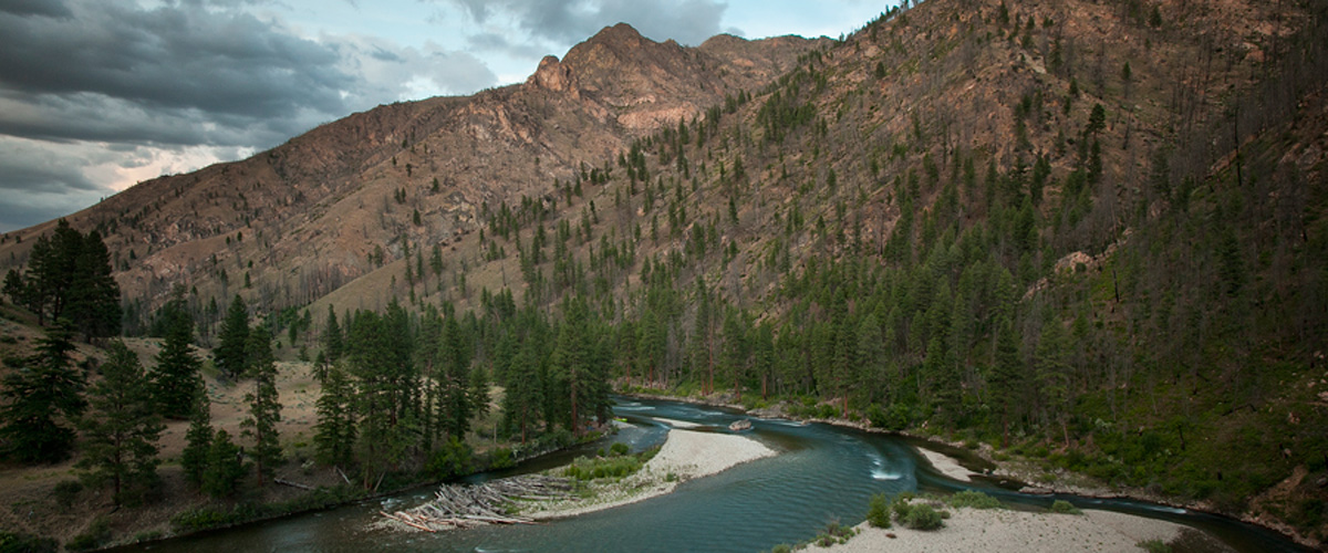 Idaho Fly Fishing guide Middle Fork and Salmon River.