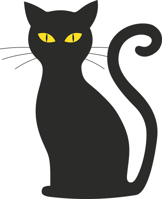 Free photo Black Mieze Silhouette Black Cat Cat Halloween.