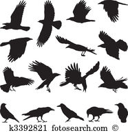 Migrate Clip Art EPS Images. 402 migrate clipart vector.