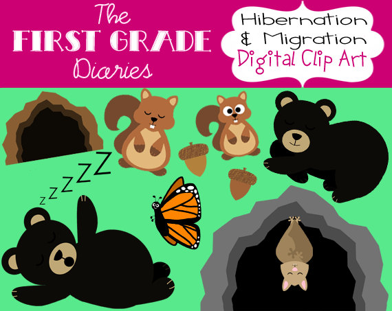 Hibernation & Migration Digital Clip Art Bears Bats Squirrels.
