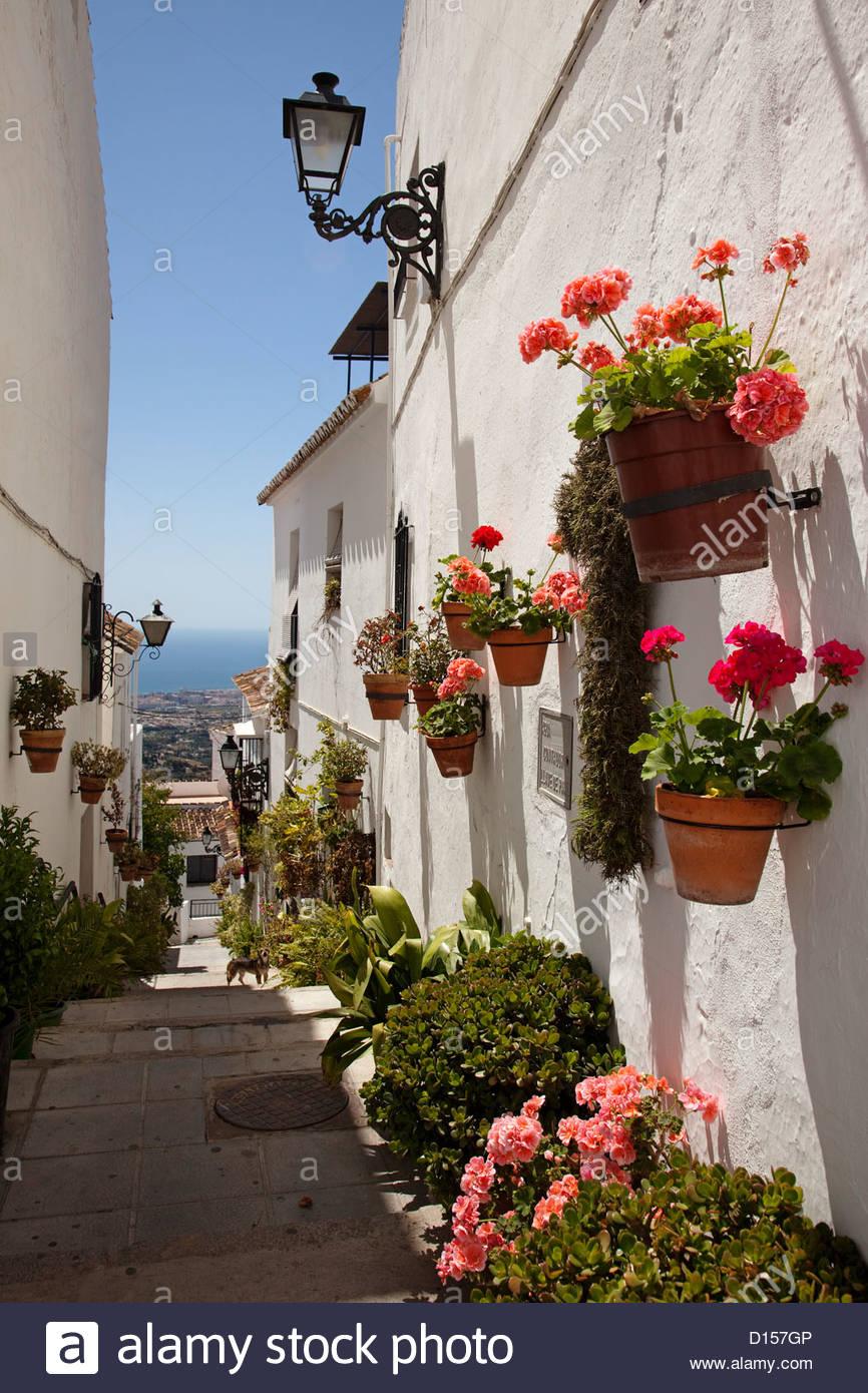 Street With Flowers White Village Of Mijas Costa Del Sol Malaga.