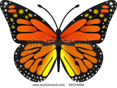 Monarch Butterfly Stock Vector 82447750.