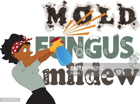 Fighting mold, fungus and mildew Clipart Image.