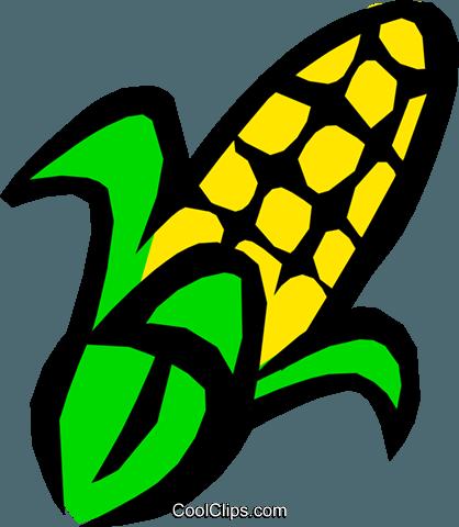 Corn Royalty Free Vector Clip Art illustration.