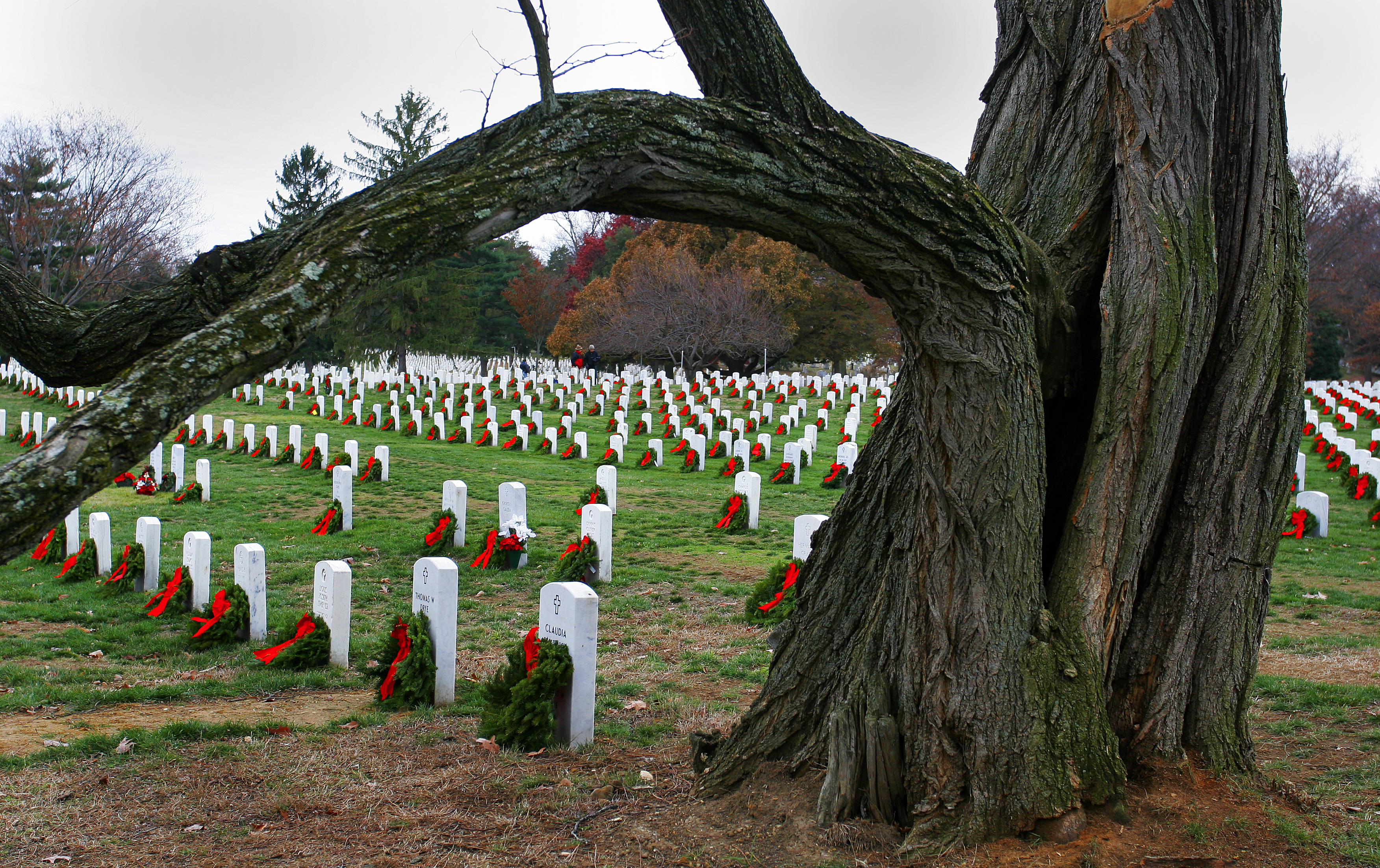 Free, Public Domain Image: Military Memorial Wreaths On Grave.