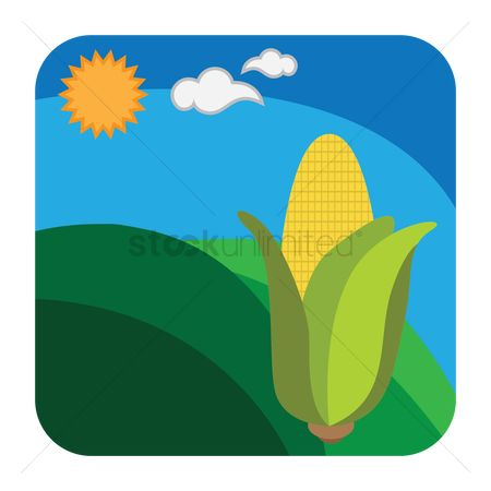 Free Corn Field Stock Vectors.