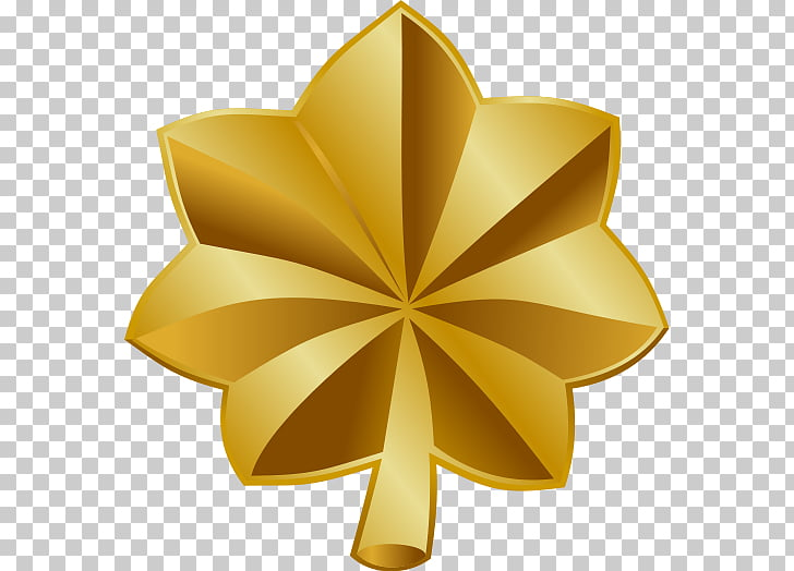 Major general Military rank British Army officer rank.