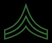 Military Rank Insignia Vector.